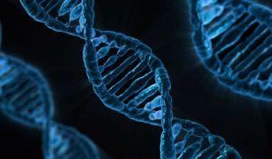 Komitet SAD podržao genetsku modifikaciju