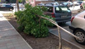 Nevreme obaralo stabla, ekipe