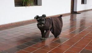 VIDEO: Manastir u kojem živi pas-monah