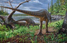 Pronađena nova vrsta dinosaurusa veličine ćurke