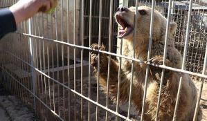 VIDEO: Lav i medved jedini preživeli stanovnici zoo vrta u Mosulu
