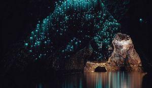 Komarci od kojih pećina liči na scene iz Avatara