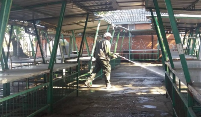 FOTO: Počelo čišćenje novosadskih pijaca