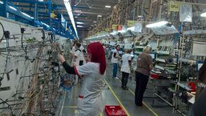 Jeftini poslovi pogurali zaposlenost u Srbiji, upitni podaci o rastu zaposlenosti