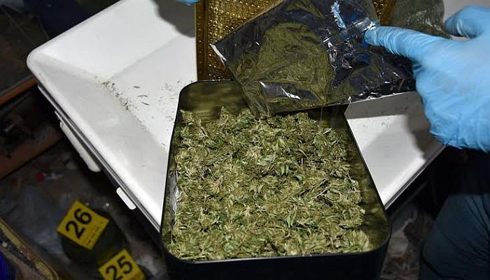 FOTO: Novosađanin u kući uzgajao marihuanu