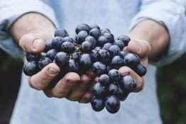 Zašto treba jesti grožđe