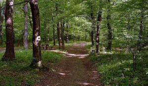 U nedelju pešačenje nemarkiranim stazama Fruške gore