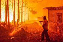 Ministarka podnela ostavku zbog mrtvih u požarima u Portugalu