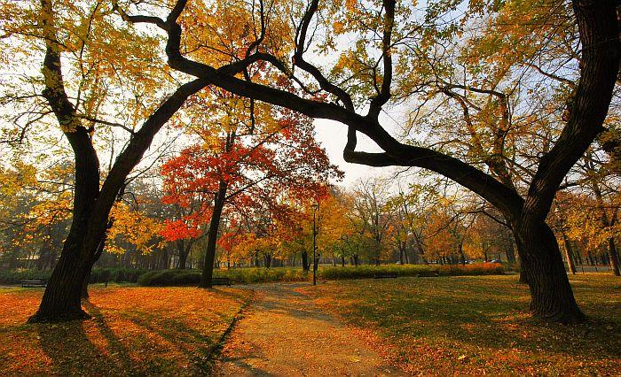 RHMZ: Pred nama topla jesen i blaga zima
