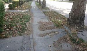 U planu obnova biciklističkih i pešačkih staza duž Futoške ulice
