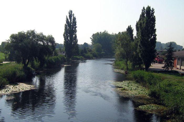 Novo zagađenje dela Velikog bačkog kanala, podneta krivična prijava