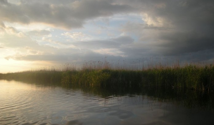Novosadska policija zaplenila 1,5 km mreža ribokradica