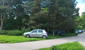 FOTO: Po Futoškom parku na desetine parkiranih vozila