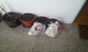 FOTO: Pojedini stanovnici Novog Sada gde god vide zgodno mesto, tu smeće