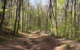 Izmena režima saobraćaja zbog Fruškogorskog maratona