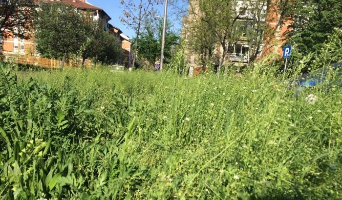 FOTO: Građani se žale na nepokošenu travu, Zelenilo moli za strpljenje