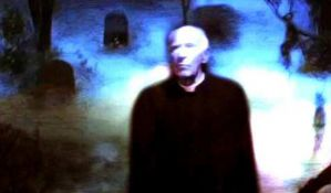 Video radovi Harolda Šara u Američkom kutku