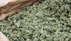 Marihuana u