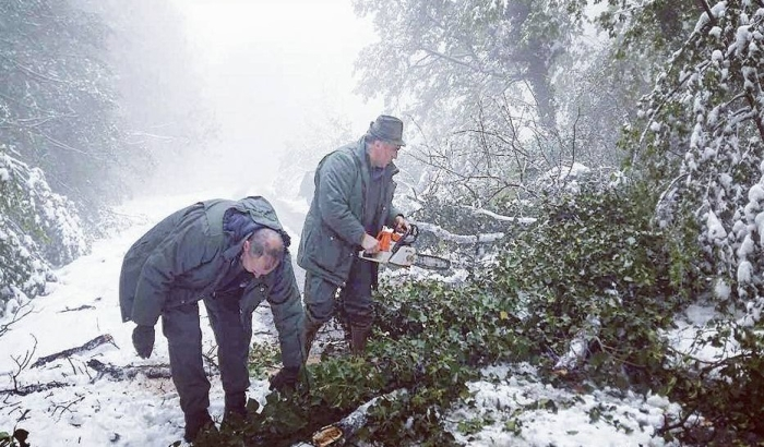 FOTO: Sneg obarao drveće na Fruškoj gori