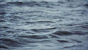 Mladić se utopio u Gružanskom jezeru