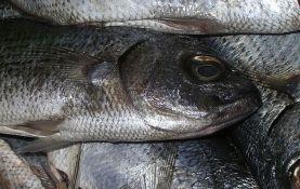 FOTO: Ribarnica lepila plastične oči mrtvim ribama da bi delovala svežije
