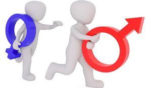 Brnabić: Zakon o rodnoj ravnopravnosti do kraja godine