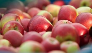 Rusi nam vratili 13 tona zaraženih jabuka