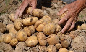 Studija: Krompir sprečio ratove