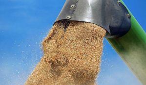 I pored ogromnog viška traže da se uvozi pšenica
