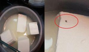 FOTO: Buve na siru - svačija i ničija nadležnost