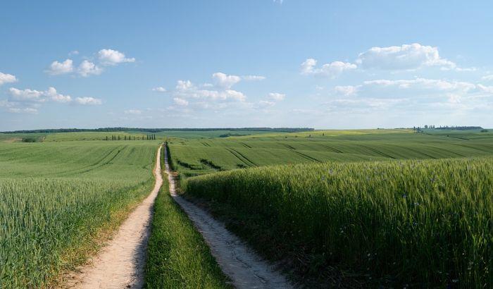 Vojvodina lošija od ostatka Srbije po poljoprivrednoj proizvodnji