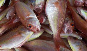 Vegani protestovali zbog patnji riba