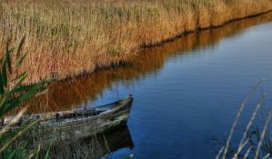 Zmajevo: Pronađeno telo mladića koji se utopio u kanalu Dunav-Tisa-Dunav