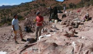 Titanosaurusi - najveće životinje koje su ikad hodale zemljom