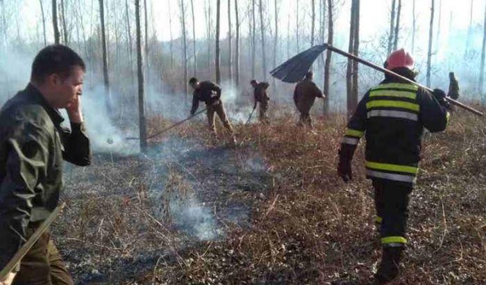Namerno izazvao požar na Fruškoj gori