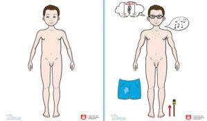 Novosadski učenici će učiti o pubertetu i telu kroz interaktivni priručnik