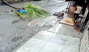 VIDEO: Drvo palo na voditeljku i ubilo je