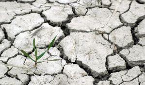 Zbog klimatskih promena sve veći broj zaraznih i drugih bolesti