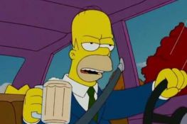FOTO: Policija zaustavila vozača, on im pokazao ličnu kartu Homera Simpsona