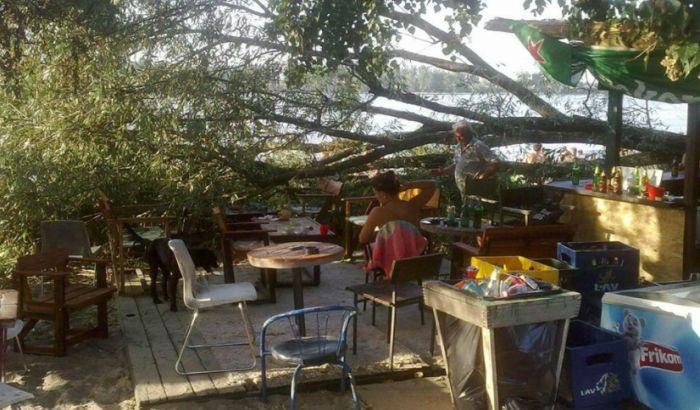 FOTO: Veliko drvo se obrušilo na kafić na Oficircu
