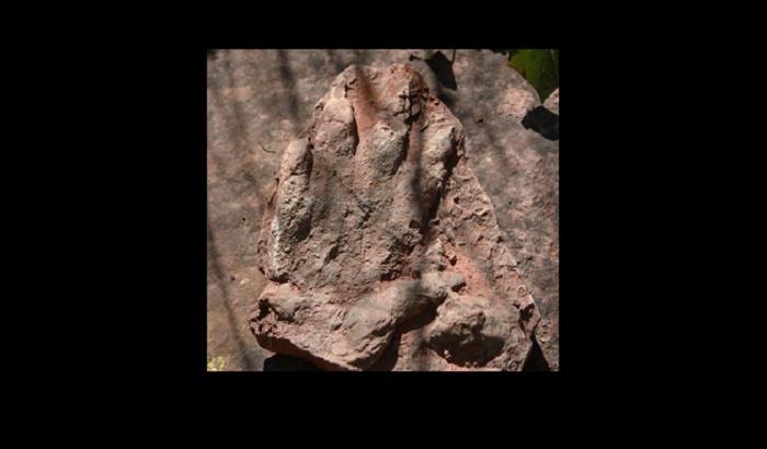 Otisak pretka dinosaurusa pronađen u Kataloniji