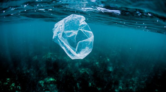 Ne postoji nijedan deo okeana gde nema ljudskog smeća