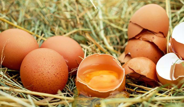 Povukli 73.000 zaraženih jaja iz Holandije