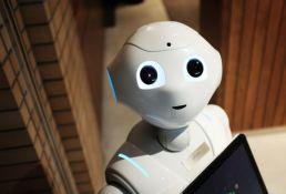Zanimanje budućnosti - dadilja za robote