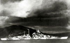 Veštačka magla kojom je skrivan Hitlerov brod oštetila drveće u Norveškoj