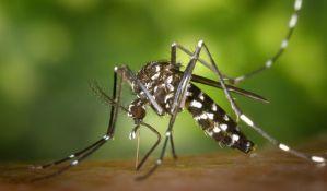 Upozorenje pčelarima, od 1. do 15. juna prskanje komaraca u Novom Sadu i Sremskim Karlovcima