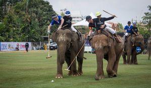 FOTO: Kraljevski polo turnir na slonovima na Tajlandu