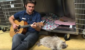 VIDEO: Veterinar pevanjem umiruje životinje pred operaciju