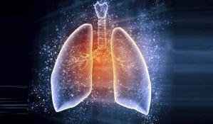 VIDEO: Pluća ne služe samo za disanje