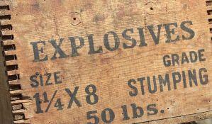 Serijski bombaš iz Teksasa razneo se tokom policijske intervencije